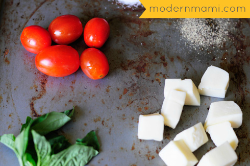 Simple Fresh Tomato and Mozzarella Cheese Salad Ingredients