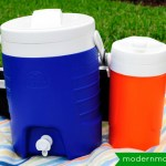 Summer Fun: 5 Tips for a Fun Picnic with Kids
