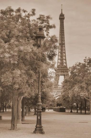 Paris Lamps-1