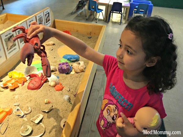 Day of Fun With Marine Life and Zoo Animals for RI Spring Break