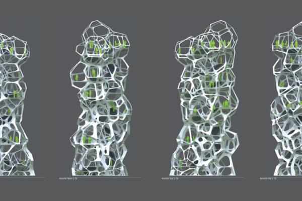 MPelzer_Optimized-Cell-Morphologies-elevations