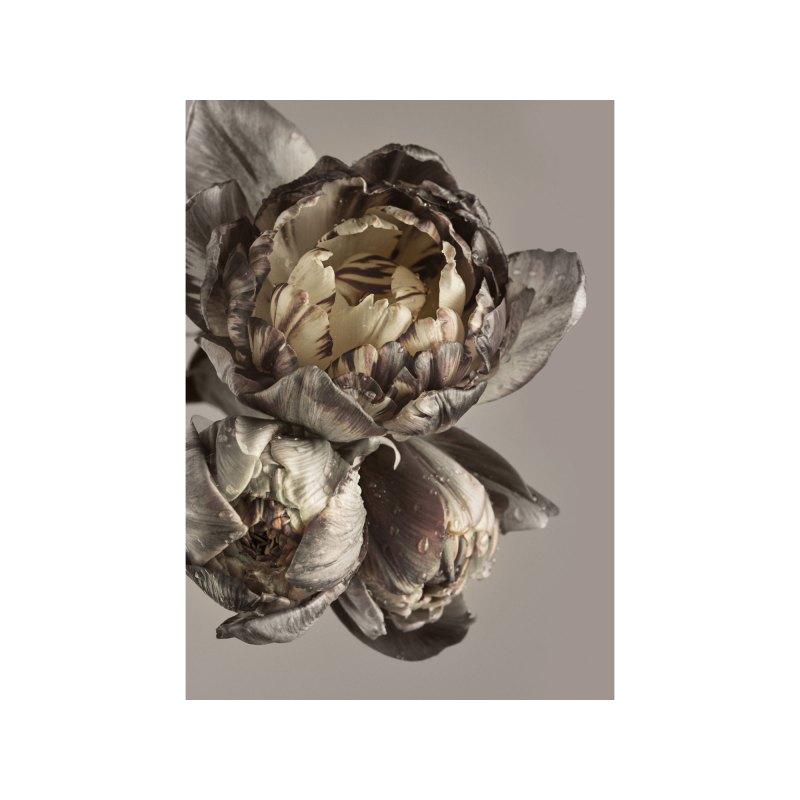 https www moebel preiss de bild poster board baroque 3 50 x 70 cm baroque 4 v26497