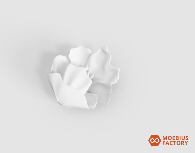 Prototype de fleur 3D blanche - accessoire de dentelle