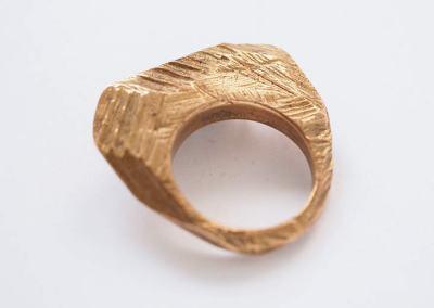 ANELLO CAMPI ARATI (bronzo 1)