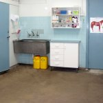 19.Preparation-area-for-equine-and-farm-animal-surgery