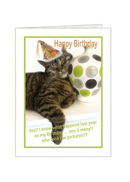Happy Birthday To The Cat From You Ref 101113 Moggies And More