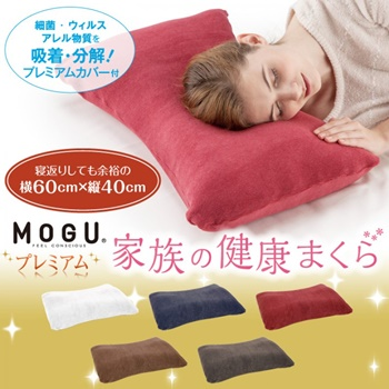 genuine fom fun pillow see why