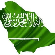 السعوديون والحل العلماني