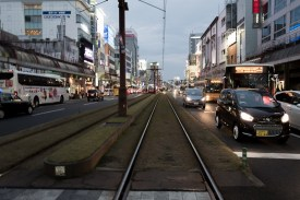 The tram tracks. Covered in some sort of grass grown on volcanic soil.
