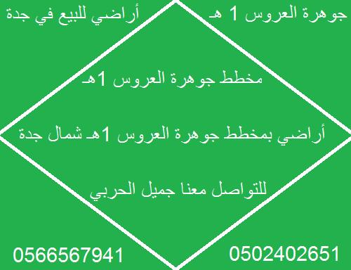 أراضي للبيع في جوهرة العروس 1ه