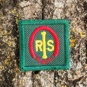 Insignia rovers ASIM Especialidad de espediciones