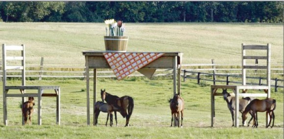 Horses and Tables Illusion