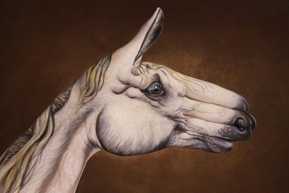 The Hand Art of Guido Daniele