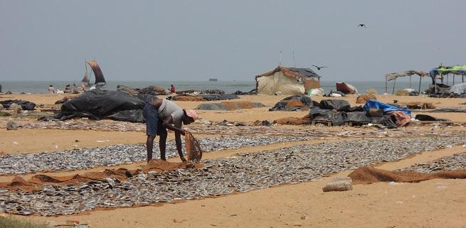 Negombo Foto: Ivana Kovačević