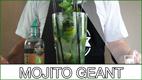 mini-mojito-geant
