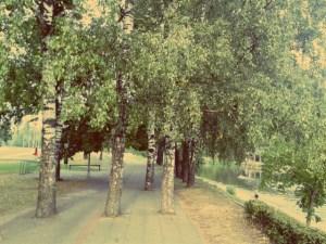 Radweg in Vilnius
