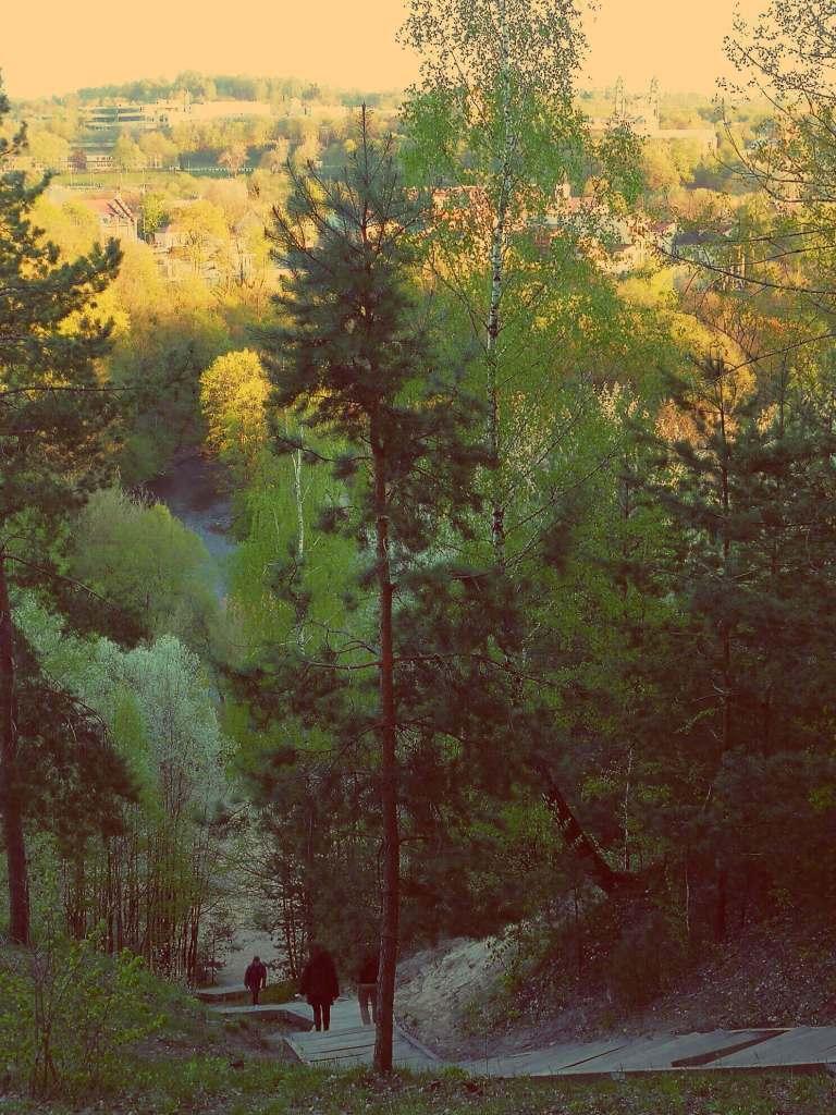Die Treppe zum Berg der drei Kreuze in Vinius von oben