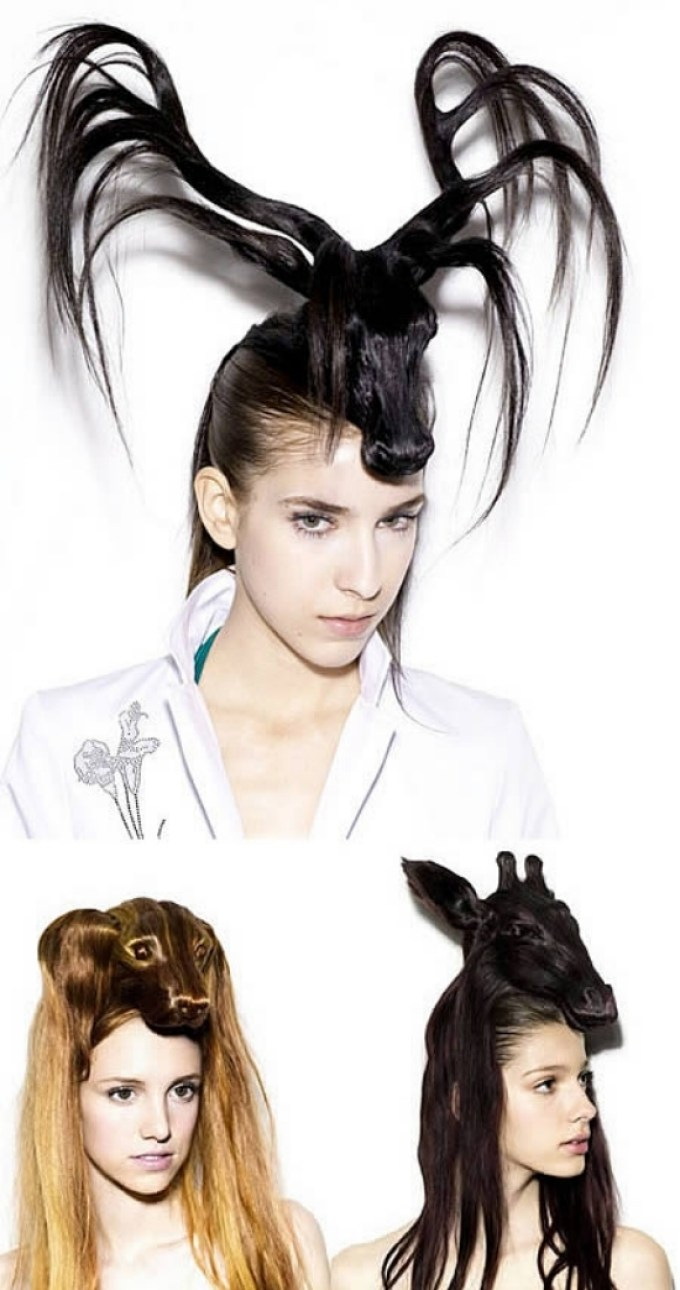 Most Odd And Craziest Hairstyles | Funny Moments, Humor Pictures ...