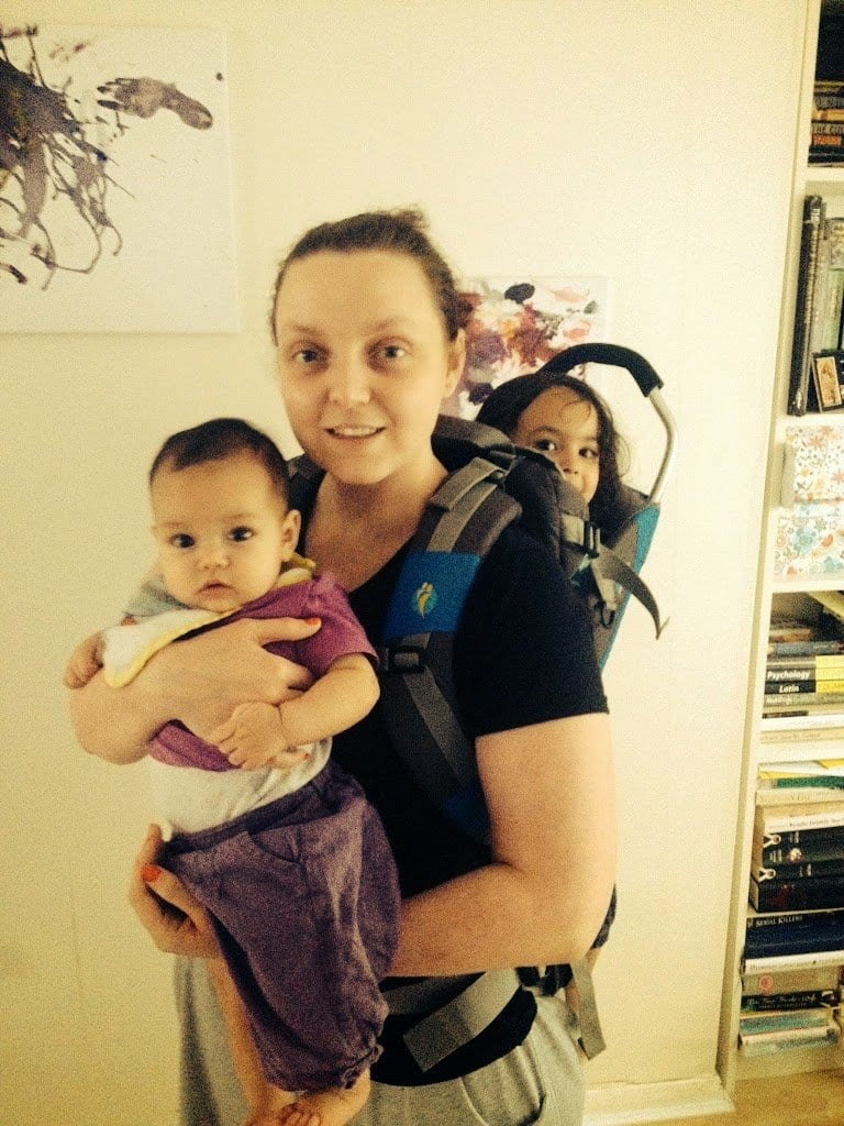 LittleLife Ranger Toddler Carrying