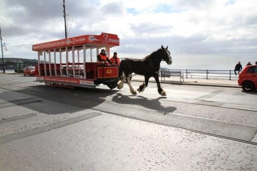 Auf die Isle of Man gehe ich jederzeit ohne Grund. Und ohne Scham über die schamlose Pressebespaßung dort, das auch.