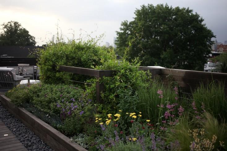 zeleni-vrt-na-krovu-11