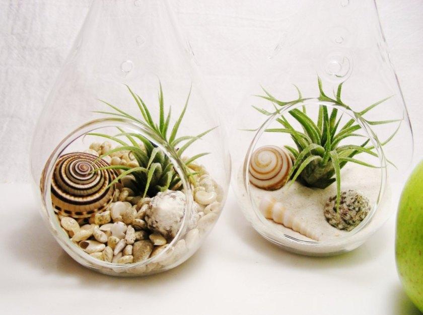Ljetna dekoracija, morski terarij