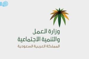 وزارة العمل استعلام عن وافد وكافة الخدمات