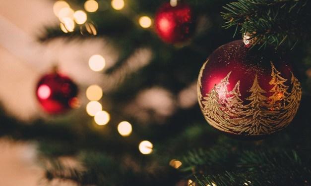 Zo vind je de juiste kerstboom voor in je huis!