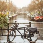 Intratuin Amsterdam | Een watervriendelijke tuin
