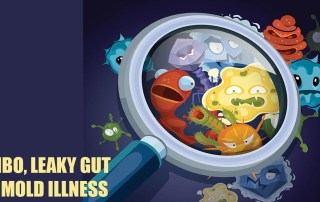 SIBO, Leaky Gut and Mold Illness