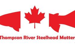 TAKE ACTION: Signal the Petition to Save Endangered Thompson River Steelhead