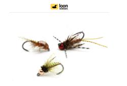Loon Dwell: Welcome Hogan Brown