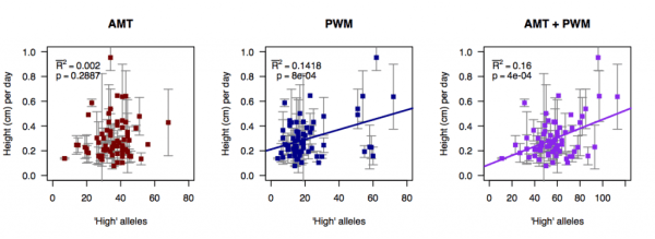 "Regression of number of ""high"" alleles for AMT (red), PWM (blue), and both (purple) on growth rate in hot, wet conditions. Supplementary Figure 9 from Yoder et al. (2014)."