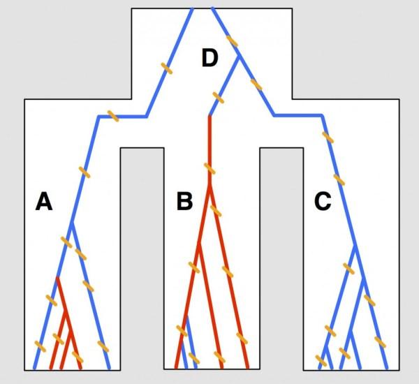 Figure 3.