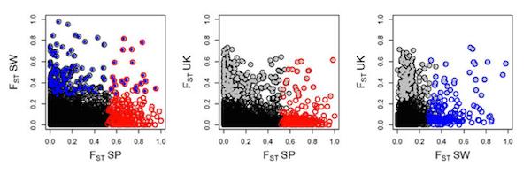 Westram et al (2014), Figure 3.