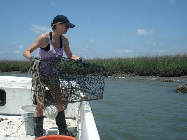 Christine, catching barnacle-ridden crabs with the Skidaway Institute for Oceanography. (Christine Ewers-Saucedo)