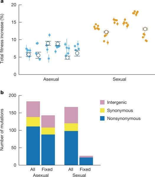 The rate and molecular signatures of adaptation M J McDonald et al. Nature 1–4 (2016) doi:10.1038/nature17143