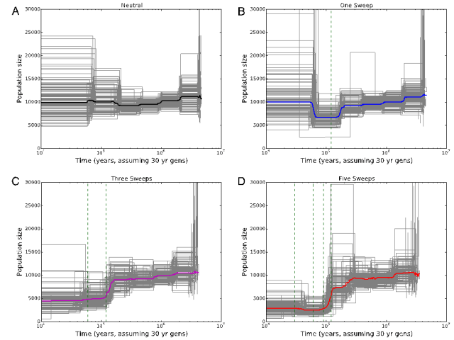 Inference of effective population size change using PSMC under different scenarios of recurrent sweeps. Image courtesy: Figure 5 of Schrider et al. (2016)