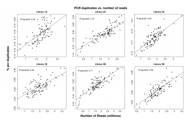 Percentage of PCR duplicates for three libraries of 96 individuals with two replicate preps.
