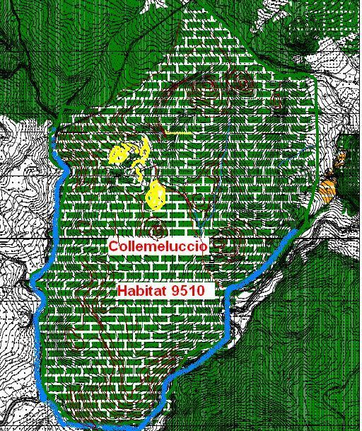 Collemeluccio Habitata 9510