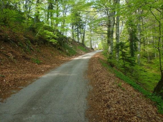 Agnone Monte Castelbarone