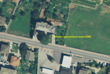 donnasipocastano2006