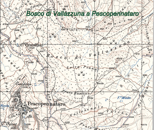 Pescopennataro - Vallazuna