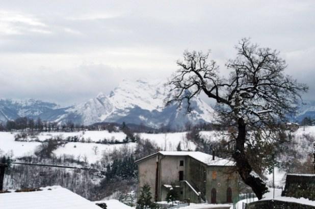 Quercia d'Inverno – La Quercia Di Magliano – Lucca con sullo sfondo il Monte Pisanino delle Alpi Apuane.
