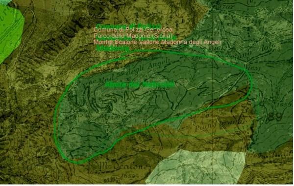 Parco delle Madonie località dove ci sono esemplrai di Abete dei Nebroidi