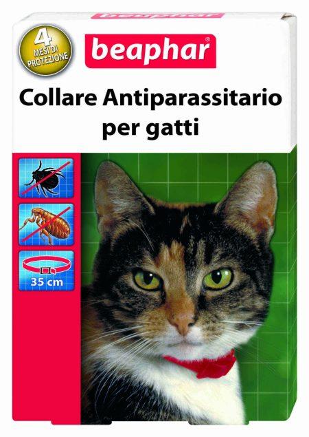 collare antiparassitario gatto
