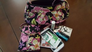 purse-proj-jlr01-jpg