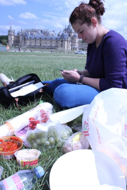 Chantilly Picnic
