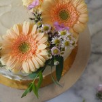 Nectarine and Peach Cake Decorated with pale orange gerber daisies