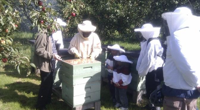 Honungensdag 2010
